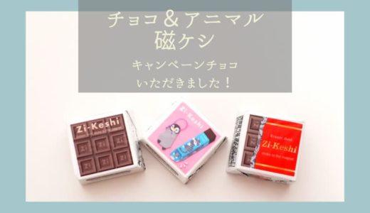 【バレンタイン&ホワイトデー】手作りがダメならチョコ磁ケシが熱い!